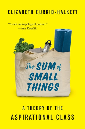 The Sum of Small Things - A Theory of the Aspirational Class ebook by Elizabeth Currid-Halkett