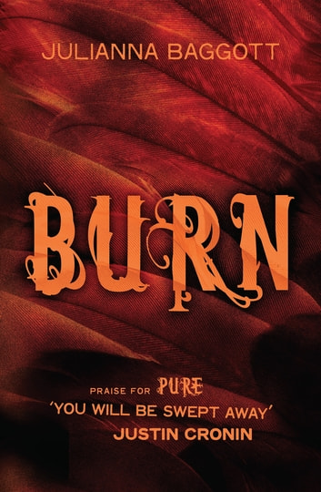 Burn ebook by Julianna Baggott