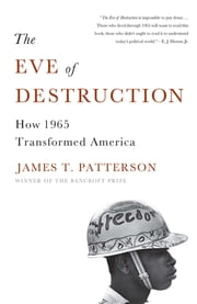 The Eve of Destruction - How 1965 Transformed America ebook by James T. Patterson