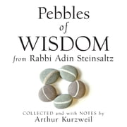 Pebbles of Wisdom from Rabbi Adin Steinsaltz - Collected and with Notes by Arthur Kurzweil audiobook by Arthur Kurzweil, Adin Steinsaltz