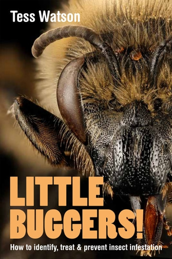 Little Buggers! How to Identify, Treat & Prevent Insect Infestation ebook by Tess Watson