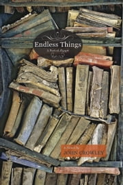 Endless Things - A Part of Ægypt ebook by John Crowley
