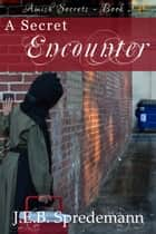 A Secret Encounter (Amish Secrets - Book 2) ebook by J.E.B. Spredemann