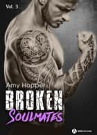 Broken Soulmates - Vol. 3/3 ebook by Amy Hopper