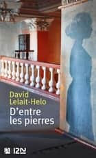 D'entre les pierres eBook by David LELAIT-HELO