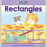 Rectangles audiobook by Pamela Hall