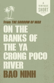 the sorrow of war essay Suggested essay topics and project ideas for the sorrow of war: a novel of north vietnam part of a detailed lesson plan by bookragscom.