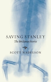 Saving Stanley - The Brickman Stories ebook by Scott Nadelson