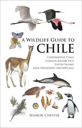 A Wildlife Guide to Chile - Continental Chile, Chilean Antarctica, Easter Island, Juan Fernández Archipelago ebook by Sharon Chester