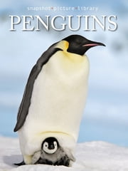 Penguins ebook by Snapshot Picture Library