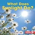 What Does Sunlight Do? audiobook by Jennifer Boothroyd