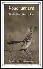 Roadrunners: Birds That Like To Run ebook by Caitlind L. Alexander
