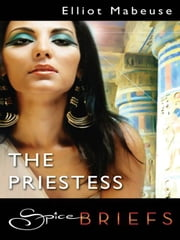 The Priestess ebook by Elliot Mabeuse