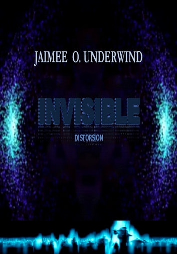 Invisible ebook by JAIMEE UNDERWIND