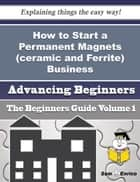 How to Start a Permanent Magnets (ceramic and Ferrite) Business (Beginners Guide) ebook by Jodie Shea