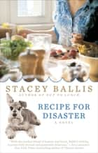 Recipe for Disaster ebook by Stacey Ballis