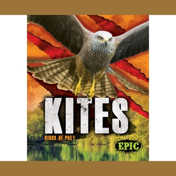 Kites audiobook by Nathan Sommer