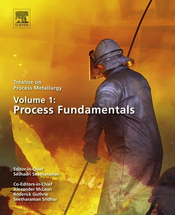 Treatise on Process Metallurgy, Volume 1: Process Fundamentals ebook by Seshadri Seetharaman