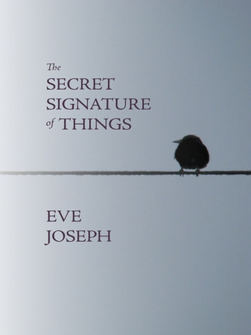The Secret Signature of Things ebook by Eve Joseph