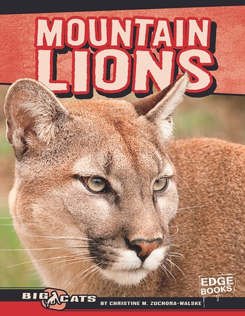 Mountain Lions ebook by Christine Mae Zuchora-Walske