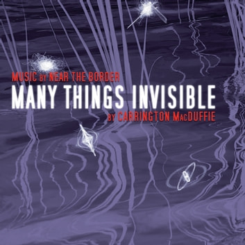 Many Things Invisible audiobook by Carrington MacDuffie,Near the Border