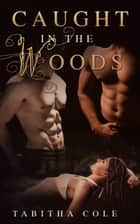 Caught in the Woods (Multiple partner, double penetration, public sex, watersports erotica) ebook by Tabitha Cole