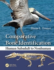 Comparative Bone Identification - Human Subadult to Nonhuman ebook by Diane L. France