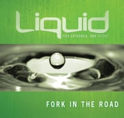 Fork in the Road Participant's Guide ebook by John Ward,Jeff Pries