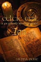 Celtic Evil A Fitzgerald Brothers Novel: Ian ebook by Sierra Rose