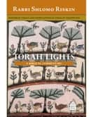 Torah Lights: BeMidbar ebook by Riskin, Rabbi Shlomo