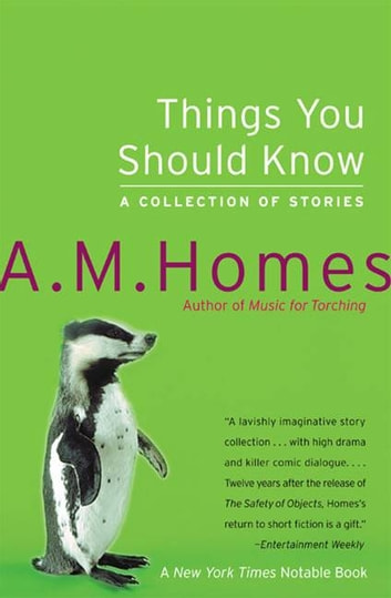 Things You Should Know - A Collection of Stories ebook by A M Homes
