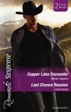 Copper Lake Encounter/Texas Cold Case/Texas Lost And Found ebook by Marilyn Pappano, Linda Conrad