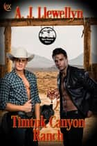 Timtuk Canyon Ranch ebook by A.J. Llewellyn