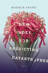 A New Index for Predicting Catastrophes ebook by Madhur Anand