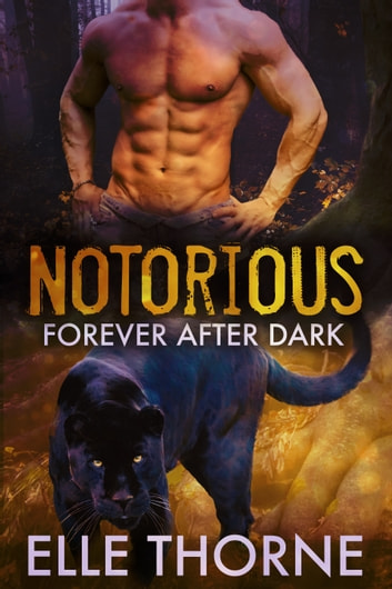 Notorious ebook by Elle Thorne