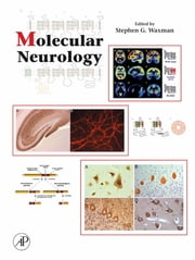 Molecular Neurology ebook by Stephen Waxman