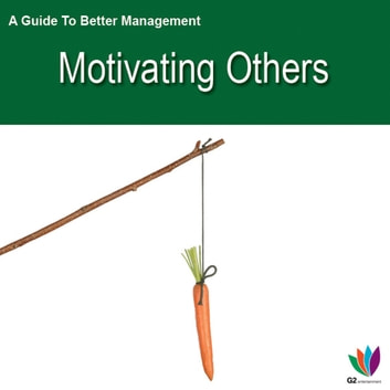 A Guide to Better Management: Motivating Others ebook by Jon Allen
