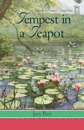 Tempest in a Teapot ebook by Judy Baer