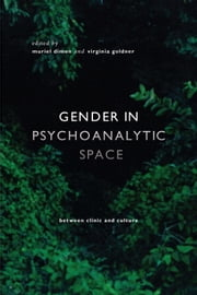 Gender in Psychoanalytic Space - Between clinic and culture ebook by Muriel Dimen,Virginia Goldner