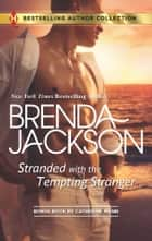 Stranded with the Tempting Stranger - The Executive's Surprise Baby ebook by Brenda Jackson, Catherine Mann