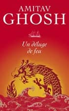Un déluge de feu ebook by Christiane BESSE, Amitav GHOSH