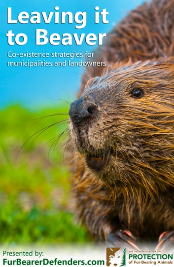 Leaving It To Beaver - Co-existence strategies for municipalities and landowners ebook by The Association for the Protection of Fur-Bearing Animals,Michael Howie