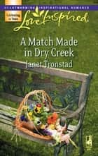 A Match Made in Dry Creek ebook by Janet Tronstad