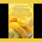 Yellow Animals audiobook by Christina Leaf