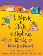 A Mink, a Fink, a Skating Rink - What Is a Noun? ebook by Jenya Prosmitsky, Brian P. Cleary