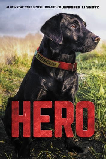 Hero ebook by Jennifer Li Shotz