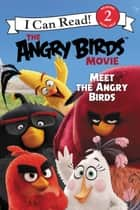 The Angry Birds Movie: Meet the Angry Birds ebook by Chris Cerasi
