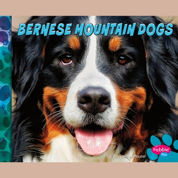 Bernese Mountain Dogs audiobook by Allan Morey