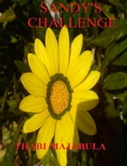 Sandy's Challenge ebook by Thabi Majabula