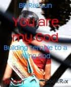 You are my God - Building temple to a living God ebook by BR Raksun